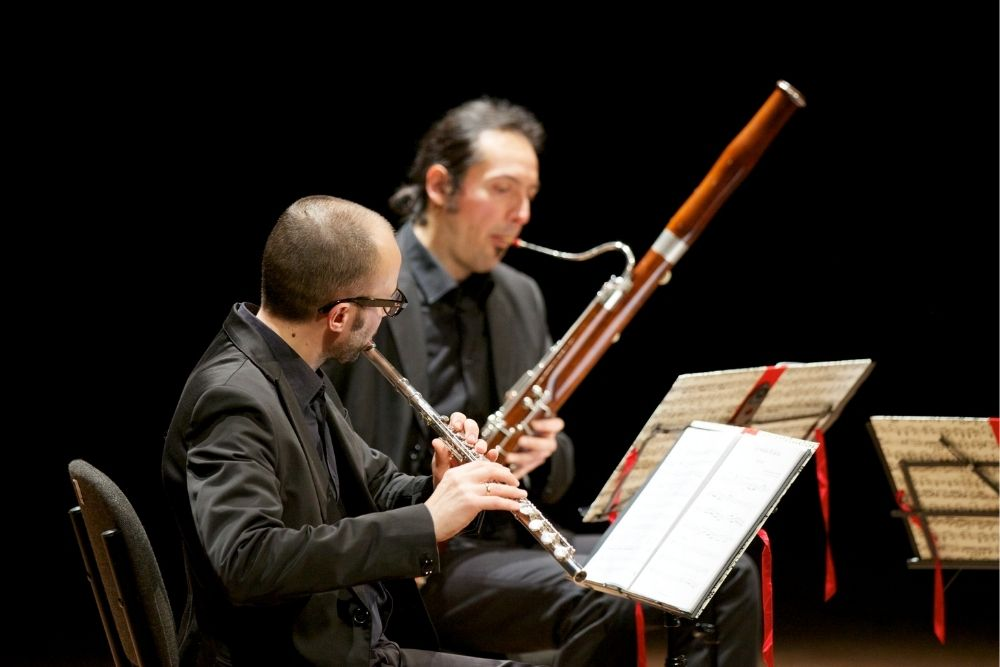 Two musicians playing in a concert